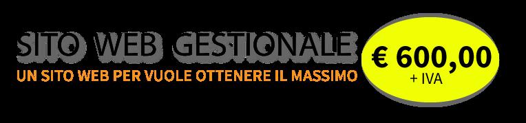 Realizzazione siti web gestionali a Firenze